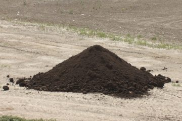 Compost | Fertilizer