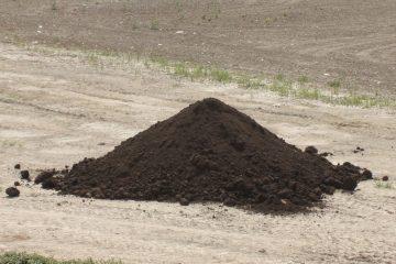 Compost | Fertilizer