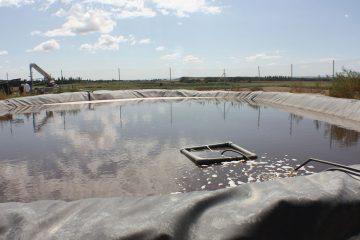 Technical Pond